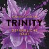 Audrey Carlan: Trinity - Gefährliche Nähe